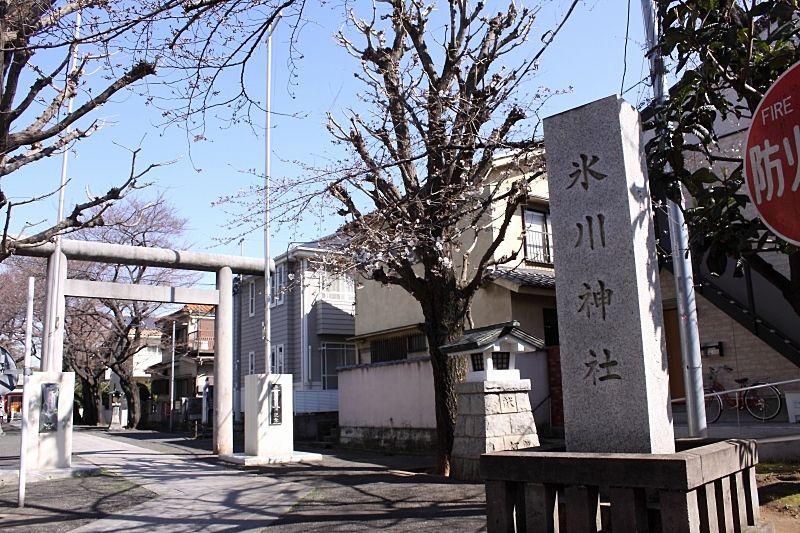 池袋氷川神社です。参道は春には桜並木で綺麗です