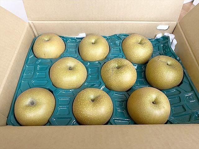 おじの畑で収穫された梨
