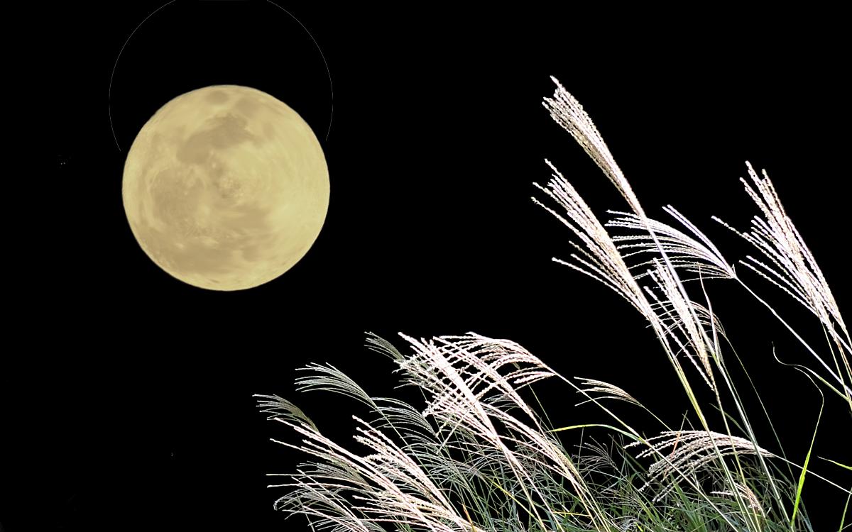月の綺麗な季節に