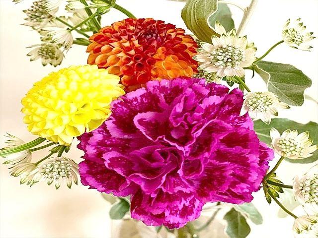 花言葉は真実の愛、永遠の幸福