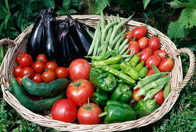 旬の食材で暑さに負けないカラダ作りを  夏野菜で熱中症対策