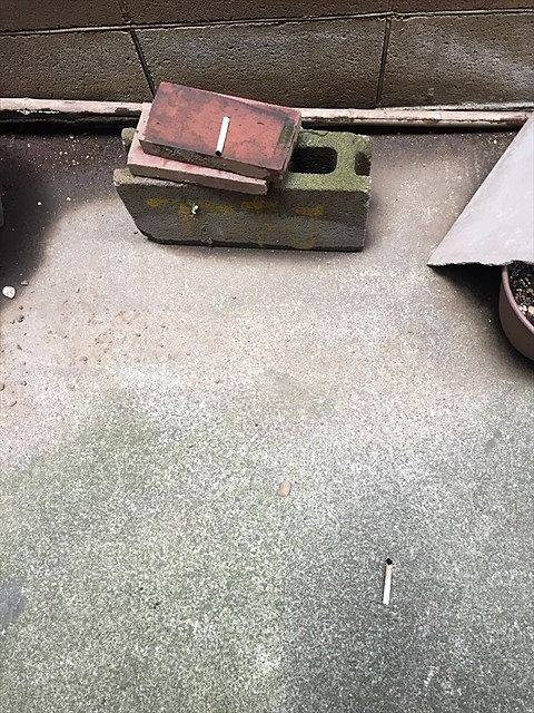 火を消さずにポイ捨てされていたセブンスター 1日に2本捨てられていることもありました