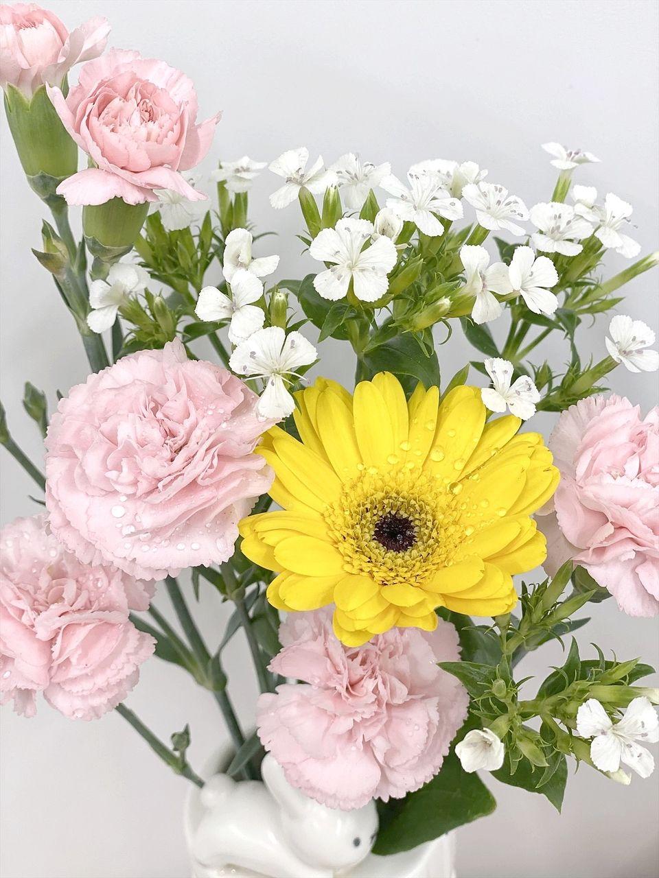 青木商事の店内にはいつもお花を飾ってお客様をお迎えしています。お気軽にお立ち寄りください